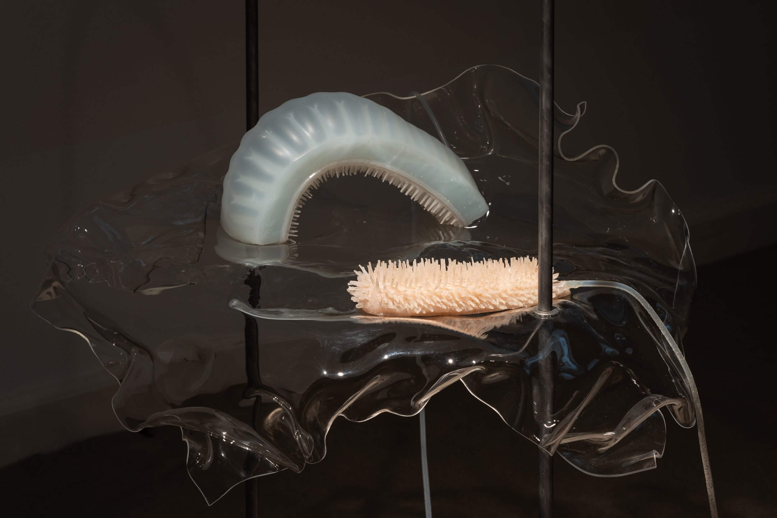 Studio ThinkingHand, Intertidal Synthesis, 2019 Foto: David Stjernholm